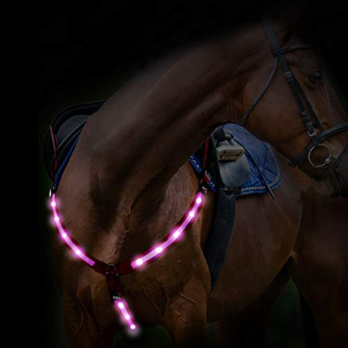 Harrison Howard USB Rechargeable LED Flashing Horse Breastplate Collar- High Visibility Tack for Horseback Riding-Superb Night Safty on Road