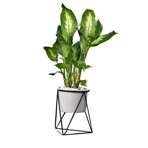 Royalr Suculentas cerámica plantador Plantas geométrica del Hierro del Estante del sostenedor del Soporte del Metal de Escritorio Jardín de Cactus Tiesto