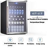 Best Beverage Coolers - Beverage Refrigerator and Cooler - Drink Fridge Review