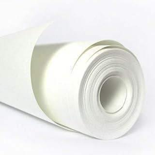 Acaza Papier Peint Intissé 140 Gr 2500x100 Cm Blanc Sans Motifs à Peindre.  Parfait Pour
