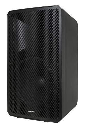 KENFORD KAC-1212A Aktiv-Lautsprecher mit Digital-Verstärker