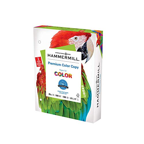 Hammermill Printer Paper, Premium Color 28 lb Copy Paper, 3 Hole - 1 Ream (500 Sheets) - 100 Bright, Made in the USA