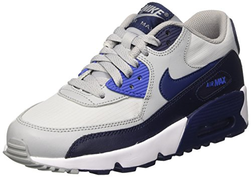 Nike Unisex-Kinder Air Max 90 Mesh Gs Sneakers, Grau (Wolf Grey/Binary Blue/Comet Bl), 40 EU