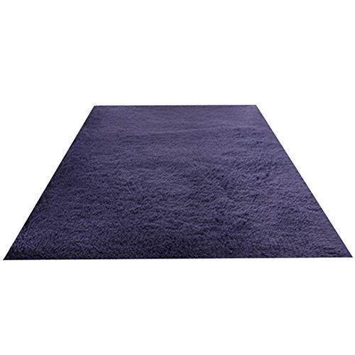 GHGMM Teppich Fußmatten, Mode Haushalt Rutschfest dauerhaft Teppich, Passend für Wohnzimmer Schlafzimmer Erkerfenster Sofa,Purple,120 * 160cm