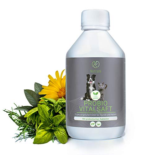 Nutrani Probiotika für Hunde und Katzen   250 ml – Probio Vitalsaft aus Kräutern mit probiotischen Bakterien - Unterstützt die Darmflora, Darmsanierung, Verdauung und den Darmaufbau deines Haustieres