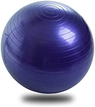 Generies Exercise Ball Yoga Ball Chair, Anti-Burst Heavy Duty Stability Ball Supports