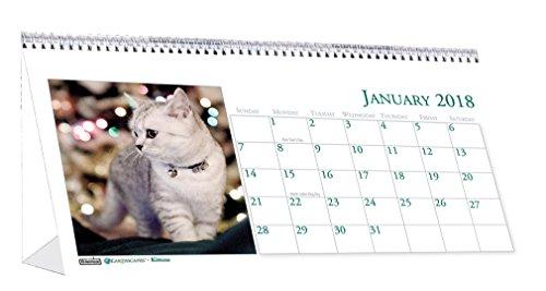 House of Doolittle 2018 Monthly Desktop Tent Calendar, Kittens, 8.5 x 4.5 Inches, January - December (HOD3669-18)