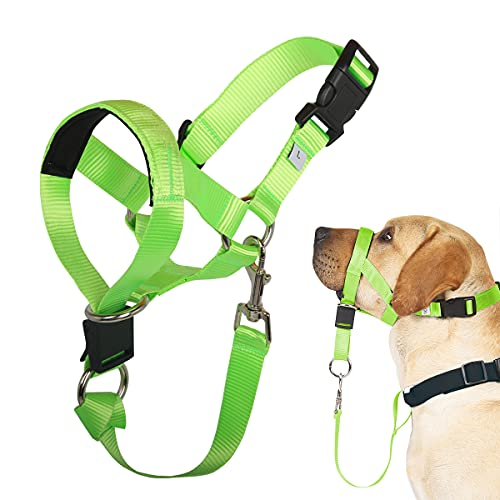 Barkless Dog Head Collar, No Pull Head Halter for Dogs, Adjustable, Padded Headcollar with Training Guide - Stops Pulling and Choking on Walks, Fluorescent Green, L