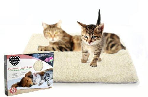 Valentina Valentti Thermodecke für Katzen und kleine Hunde, Selbstwärmend