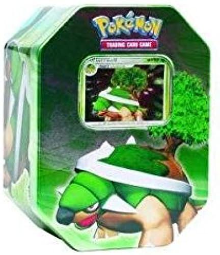 Pokemon Diamond & Pearl 2007 Torterra Collector's Tin [Toy] [Toy]