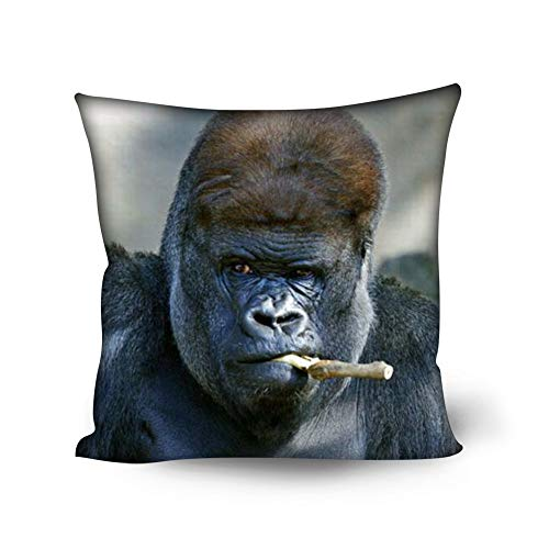 Amzbeauty Cool King Kong fundas de almohada divertidas fundas de almohada de 45 x 45 cm cuadrados