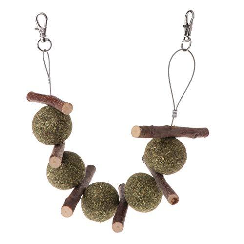 ZOOMY Haustier Zähne Schleifen Spielzeug Hamster Kaninchen Apfelbaum AST Gras Ball Hängekäfig Spielzeug für Kleines Tier