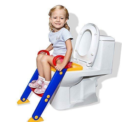 Nirvik 2 in 1 Training Foldable Ladder Potty Toilet Seat for Kids (Multi Colour)