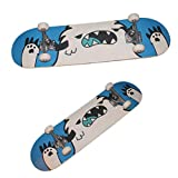 Anime Sk8 The Infinity Kyan Reki Cosplay Skateboard Props 1:1 Ratio Perfect Restoration for Halloween (Hasegawa Ranga,)