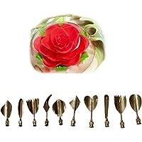CFtrum 10PCS 3D Jelly Gelatina Herramientas del arte Conjunto de Torta de la flor del acero inoxidable Agujas Incluye Jeringa