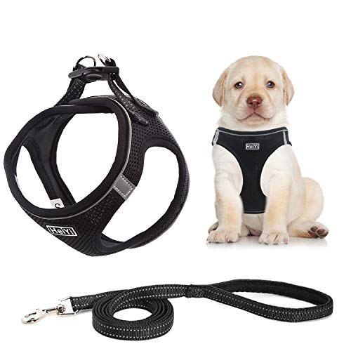 HeiYi Puppy Harness and Leash Set, Dog Harness Vest Set Reflective and Breathable Material, Fit for Small Medium Pet Vest Harness Set, No Pull No Choke (M, Black)