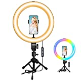 10.2' RGB Ring Light with Mini Save-Space Tripod Stand, MACTREM Selfie LED Ring Light with Remote, 10 Brightness Level, 3 Normal Color & 14 RGB Mode for YouTube, Live Stream, Vlog, Zoom, Makeup