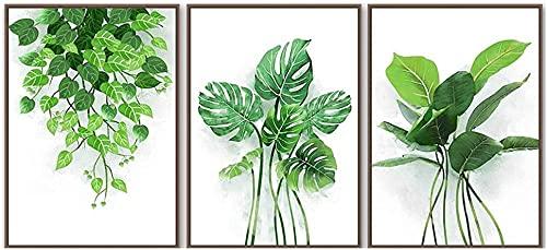 Soggiorno Piantaggine Verde Aneto Monstera Leaf Plant Poster Nordic Wall Art Tela Poster Nordic Decor Wall Pictures 40x50cmx3 No Frame