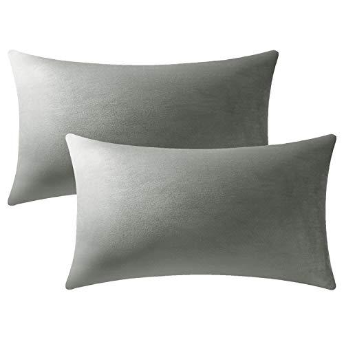 DEZENE Fundas de Cojín Gris Claro: Paquete de 2 Fundas de Almohada Decorativas Rectangulares de Terciopelo Suave Sólido de 40x60 cm para Sofá de Granja