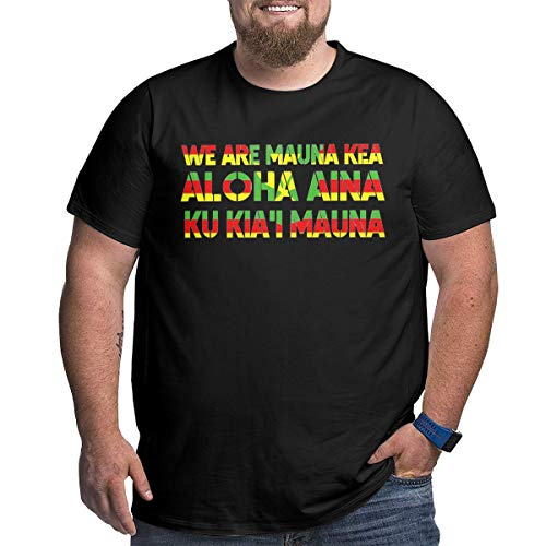 Kanaka Maoli Flag - We Are Mauna Kea Men's Big T-Shirts Plus Tee Shirts for Larger