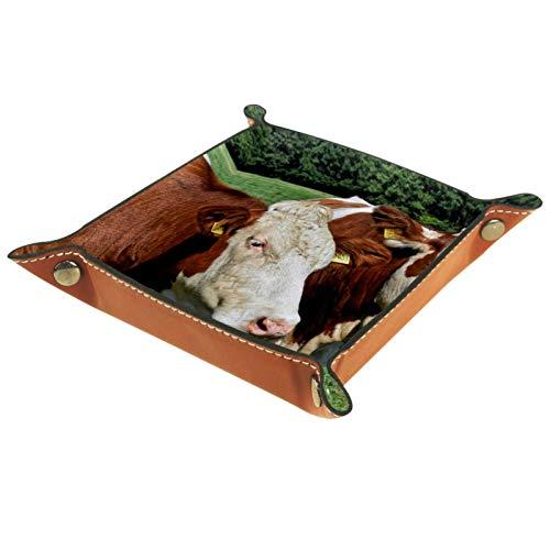 Caja de almacenamiento pequeña, bandeja de valet para hombre,Animal ganado vacas pastos naturaleza,Organizador de cuero para llaves de caja de monedas