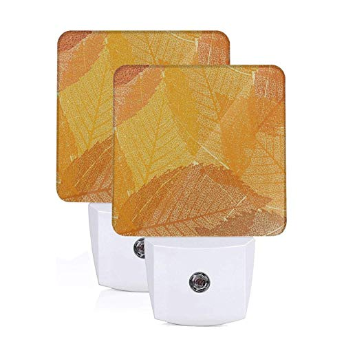 Led Plug-in Night Light Abstract Happy Thanksgiving Day Autumn Fall Maple Leaves 2 Pack Kids Night Light Lamp Emergency Lighting with Dusk to Dawn Automatic Sensor for Adults Hallway Bedroom Bathroom