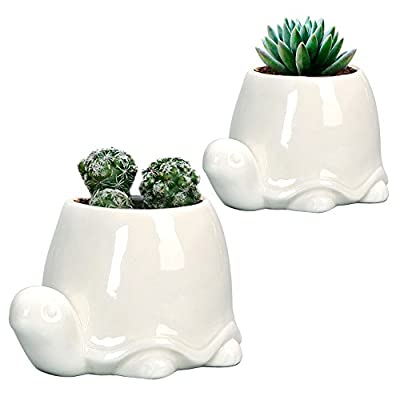 GeLive Elephant White Ceramic Succulent Planter Flower Pot Window Box