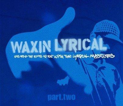 Waxing Lyrical Part 2 [Vinyl LP]