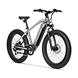 VELOWAVE Electric Bike Adults 750W BAFANG Motor 48V 16Ah Lithium-Ion Battery Removable 26'' Fat Tire Ebike 25MPH Snow Beach Mountain E-Bike Shimano 7-Speed UL Certified Silver