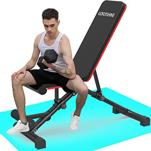 GOFLYSHINE Flat Bench Adjustable Weight Bench for Home Exercise Bench Strength Training Benches Multi-Position Workout Bench for Gym Fitness Full Body Weight Lifting Training(LY-Dumbbell Bench-2)