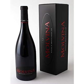 Cantina-MOLVINA-Jahrgang-2015-Italienischer-edler-Rotwein-Vollmundig-Tne-von-roten-Beerenfrchten-Ronchi-di-Brescia-Rosso-in-eleganter-Schachtel-Aus-einem-Boutique-Weinberg-der-bis-zu-50-Monate-in-Eich