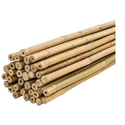 PLANTAWA Tutores de Bambú, Tutores Plastificados Ø 6-8 mm, Paquete 25 Unidades, Uso Agrícola para Sujetar Plantas, Hortalizas y Árboles (150cm)
