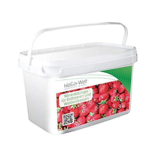 Engrais minéral pour fraises et fraises des bois Engrais pour fruits Boîte de 3 kg