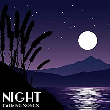 Night Calming Songs: 15 Bedtime Melodies to Help You Sleep and Rest