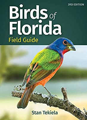 Birds of Florida Field Guide (Bird Identification Guides) by Adventure Publications