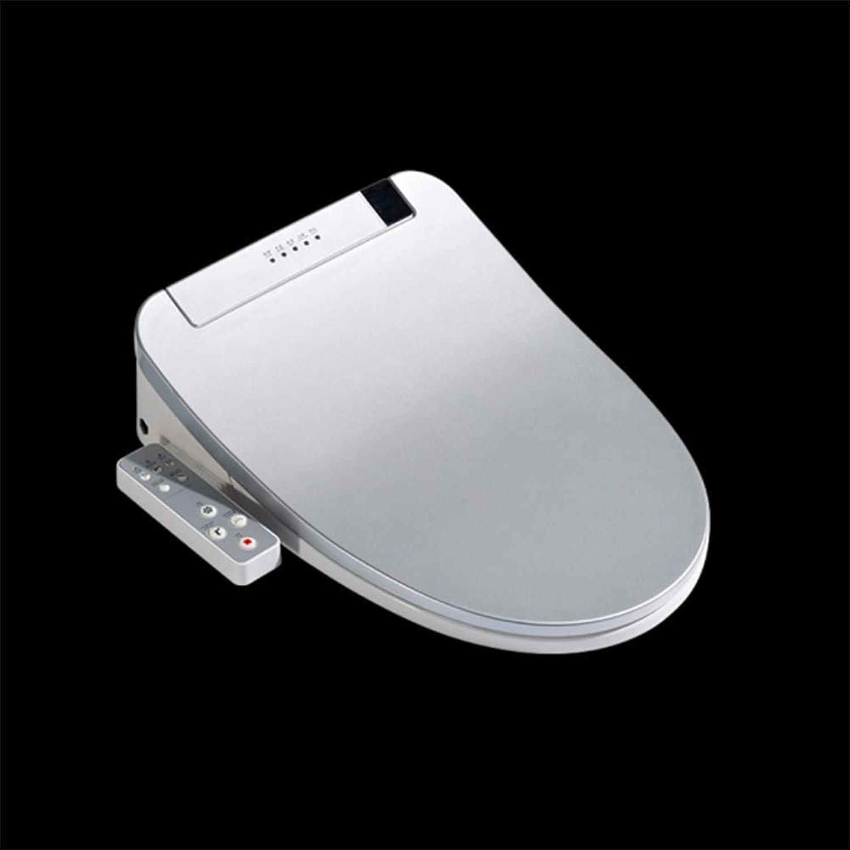 HSJDP Elektrischer intelligenter Toilettensitz Silber V-Form Deckelabdeckung mit seitlichem Bedienfeld Waschen Trocknen