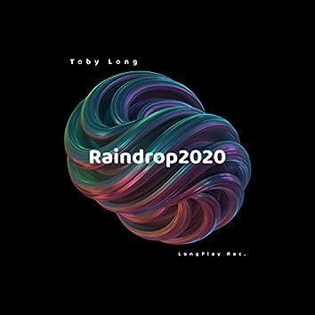 Raindrop 2020 (Single Version)