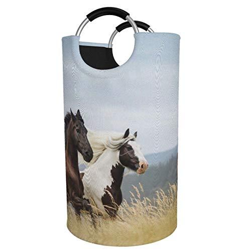 Sunmuchen Cesta de lavandería para caballos, impermeable, grande, organizador de ropa, juguetes, dormitorio, baño, con asas de aluminio