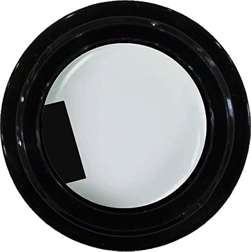 ポルノ個人慢カラージェル enchant color gel M004 JasmineWhite 3g/ マットカラージェル M004 ジャスミンホワイト 3グラム