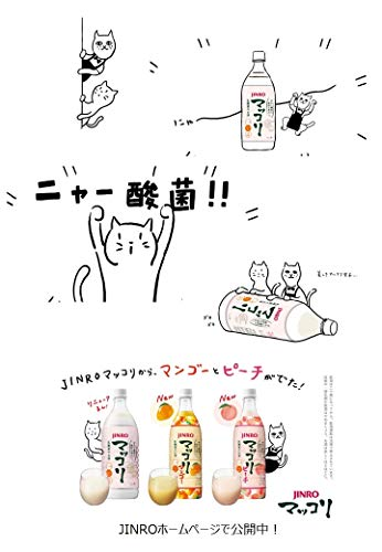 JINROマッコリ[1000ml×5本]