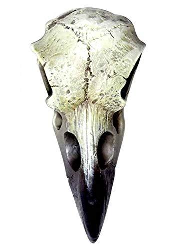Alchemy Gothic Reliquary Raven Skull White