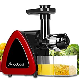 Aobosi Slow Masticating juicer Extractor, Cold Press Juicer Machine, Quiet Motor, Reverse Function, High Nutrient Fruit… |