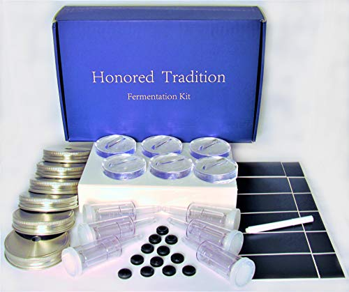 HONORED TRADITION Food Fermentation 6 Weights, Stainless Steel LIDS, and AIRLOCK for Fermented Probiotic Foods. Fits Wide Mouth Mason Jars.