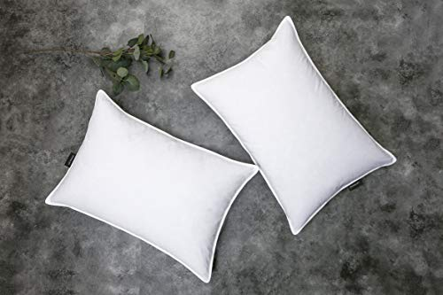 SNUG&COZY Grey Goose Feather Down Pillows for Sleeping(2 Pack)- Standard Size(20IN×26IN), Goose Feather&Down Filling, 100% Cotton Cover, 100% Down Proof, Machine Wash, White