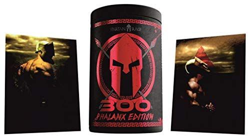 Limited Edition Godsrage 300 Phalanx Edition Rage Pre-Workout Booster Trainingsbooster War Berrys - inkl. Postkarten 400g
