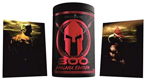 Limited Edition Godsrage 300 Phalanx Edition Rage Pre-Workout Booster Trainingsbooster War Berrys - inkl. Postkarten 400g