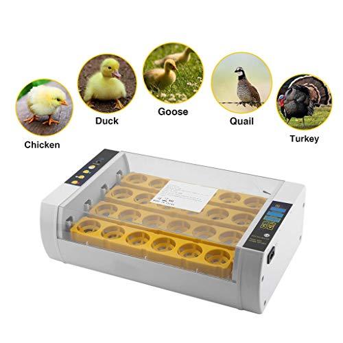 FunHifan Inkubator Brutmaschine Vollautomatisch 24 Eier Brutautomat LED Temperaturanzeige und Feuchtigkeitsregulierung für Hühnergeflügel Wachtel Truthahn Eier Heimgebrauch Automatisches Eierdrehen