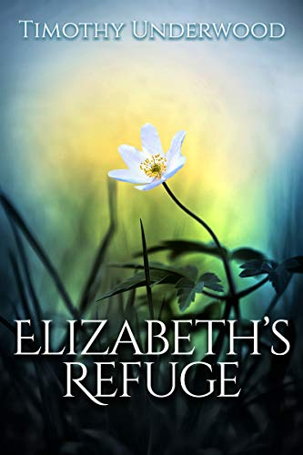 Elizabeth's Refuge: An Elizabeth and Darcy Story by [Timothy Underwood]
