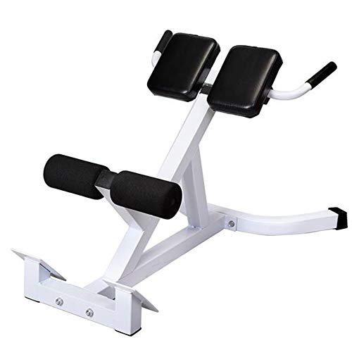 TANTIKC Multifunctional Roman Chair Back Ultra-Extending Bench Press Abdominal Muscle Training Device Indoor Super Bench Press Frame for Professional Equipment for All-Round Muscle Fitness Training