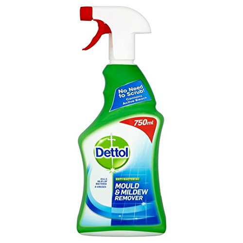 Dettol Mould Remover Cleaning Spray 750ml
